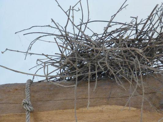 Terre de Doue nid de corneille PETITE